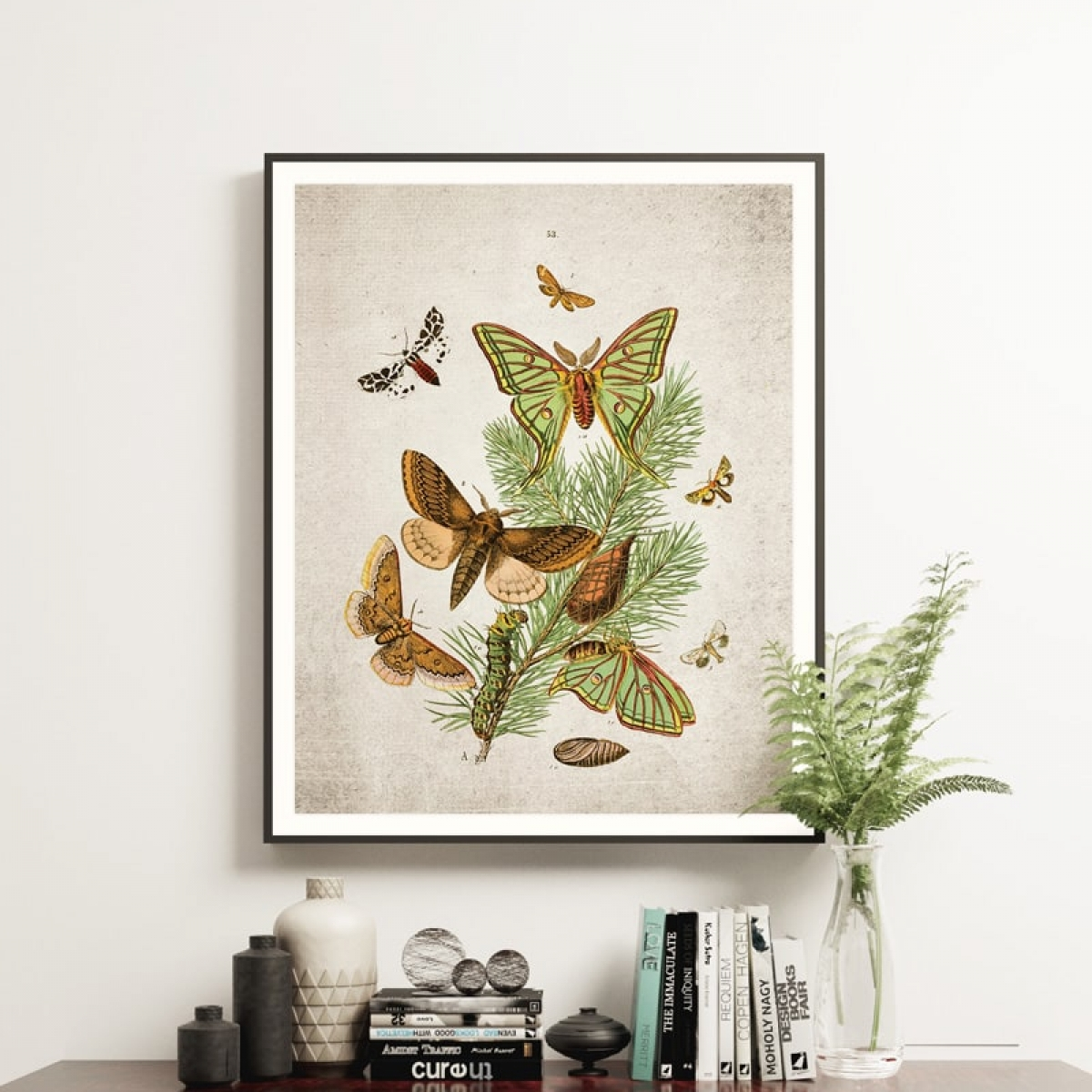 Minibeast Vintage Entomology Giclee Print (European Moths Two Plate From 1882)