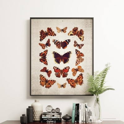 Vintage Entomology Giclee Print (British Butterflies Plate From 1837)