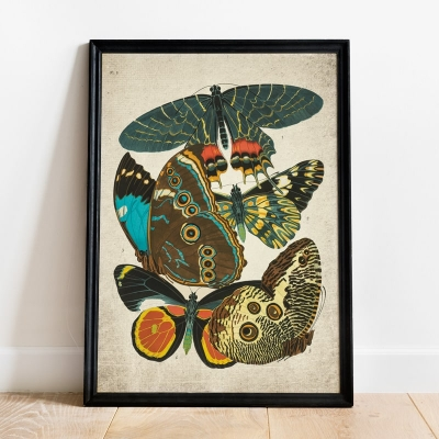 Vintage Entomology Giclee Print (Papilio Scene #2 from 1925)