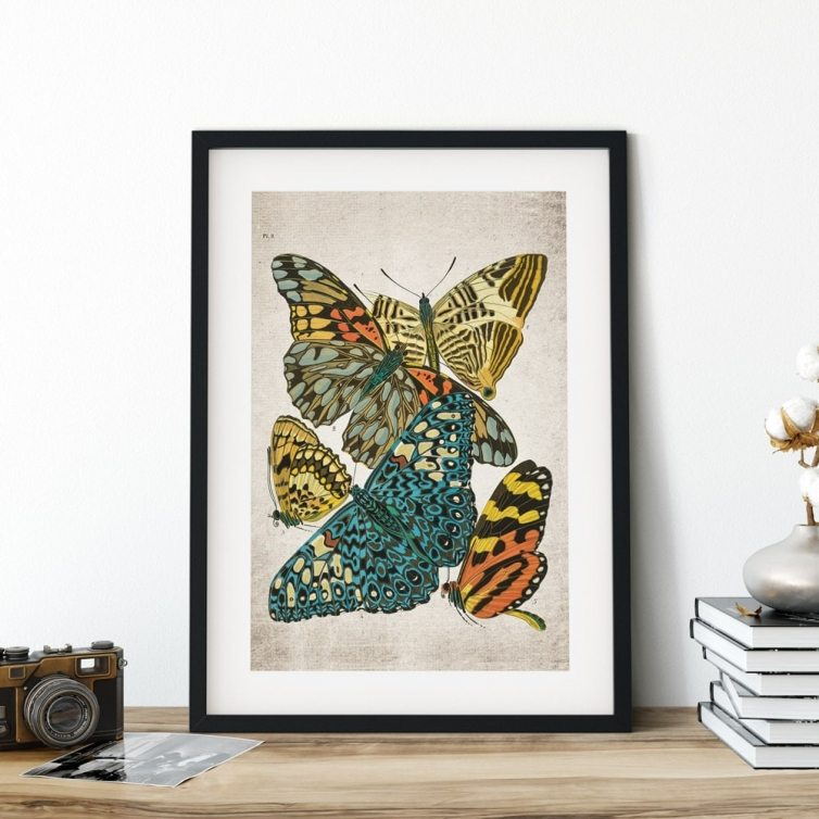Minibeast Vintage Entomology Giclee Print (Papilio Scene #3 from 1925)