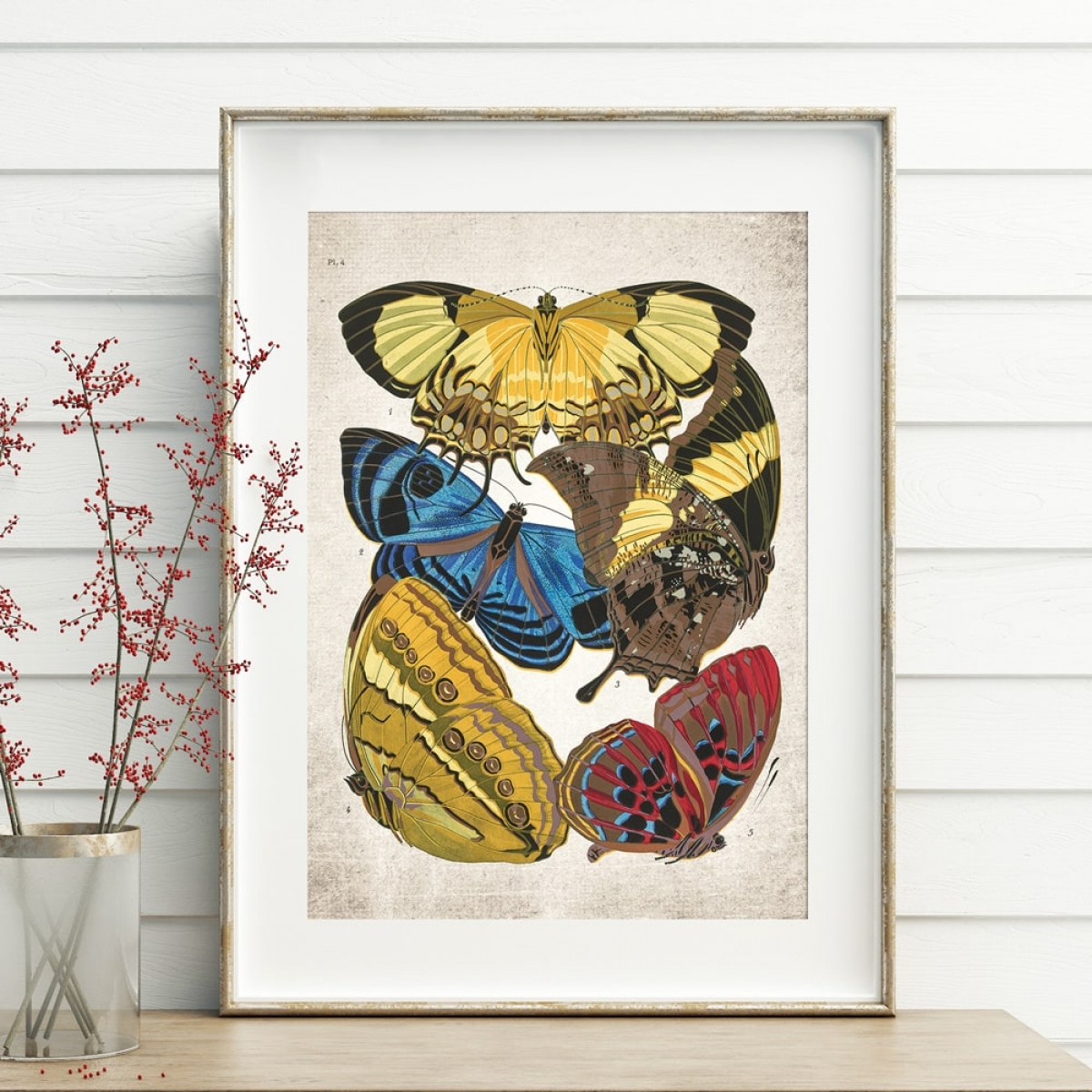 Minibeast Vintage Entomology Giclee Print (Papilio Scene #1 from 1925)