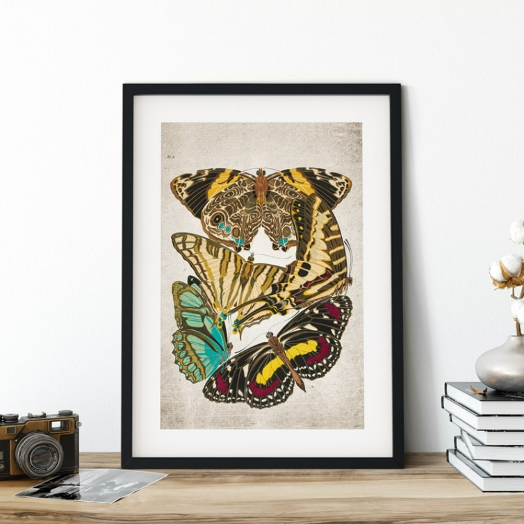 Vintage Entomology Giclee Print (Papilio Scene #4 from 1925)