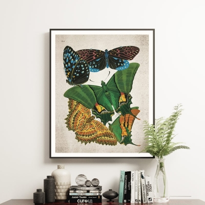 Vintage Entomology Giclee Print (Papilio Scene #5 from 1925)