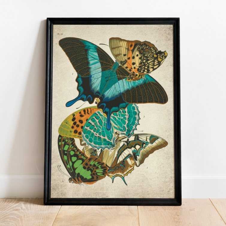 Vintage Entomology Giclee Print (Papilio Scene #10 from 1925)