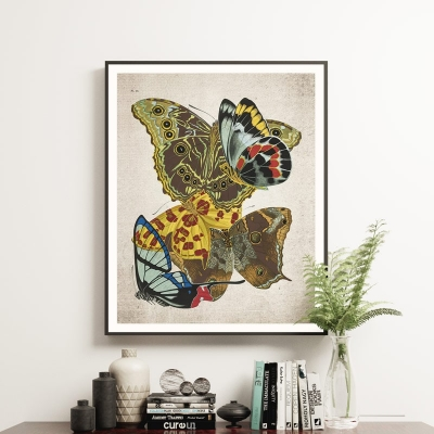 Vintage Entomology Giclee Print (Papilio Scene #11 from 1925)