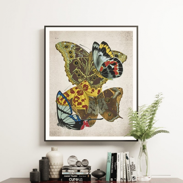 Minibeast Vintage Entomology Giclee Print (Papilio Scene #11 from 1925)